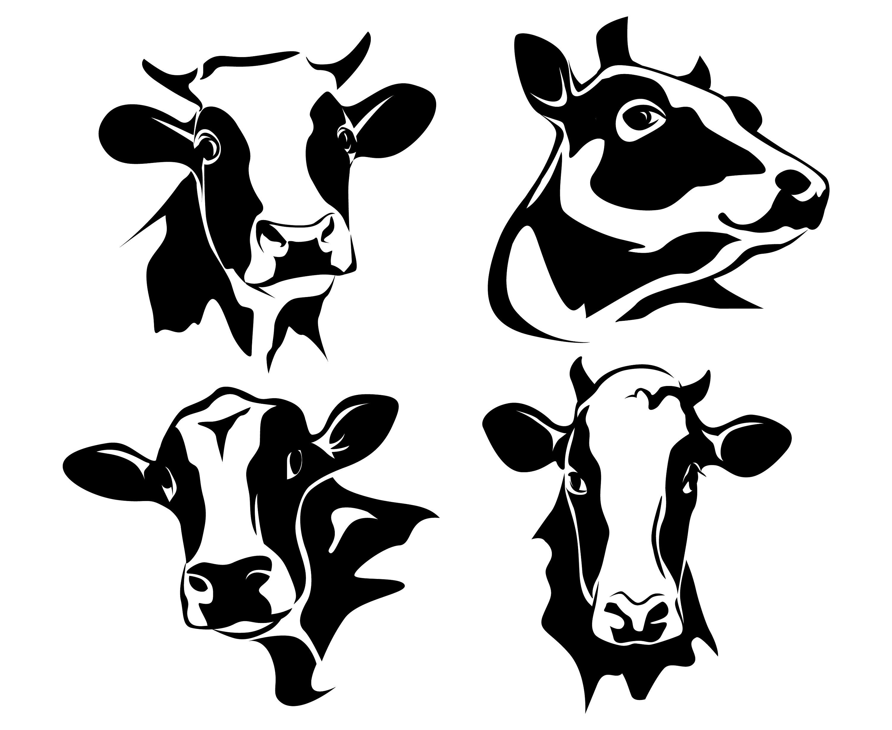 Cow, Cow head, Dairy cow, Milk cow, Silhouette,SVG