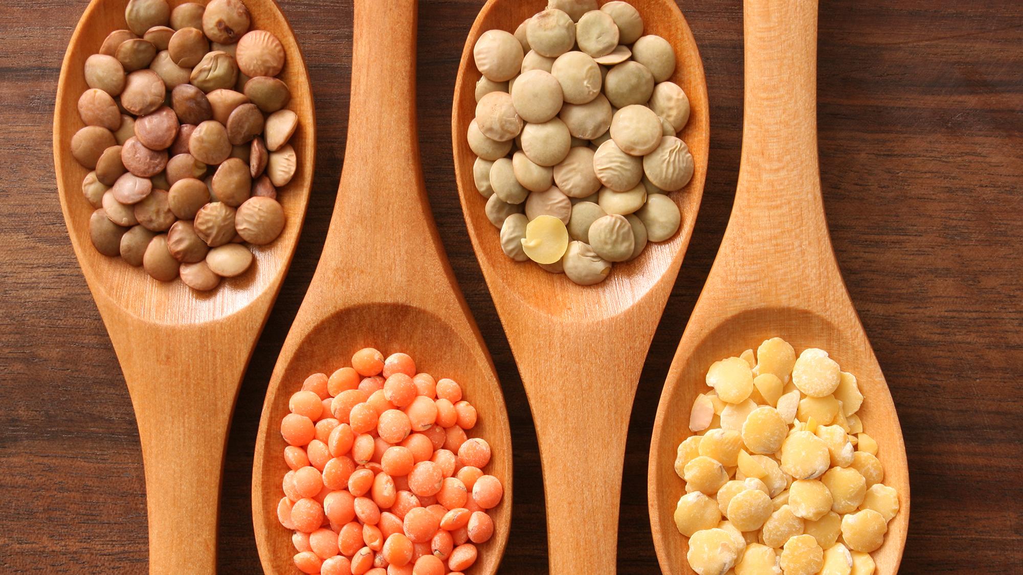 Blog Vegan protein sources, Iron rich foods, Vegetarian diet