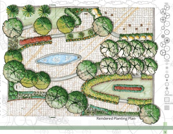 tree plan design promarker landscape Pinterest Master plan
