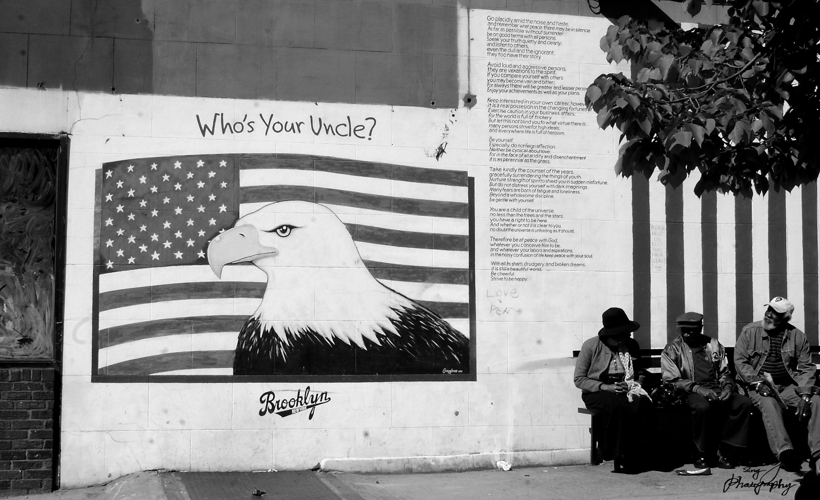 I Have No Idea ~ Boerum Hill, Brooklyn, New York, U.S.A