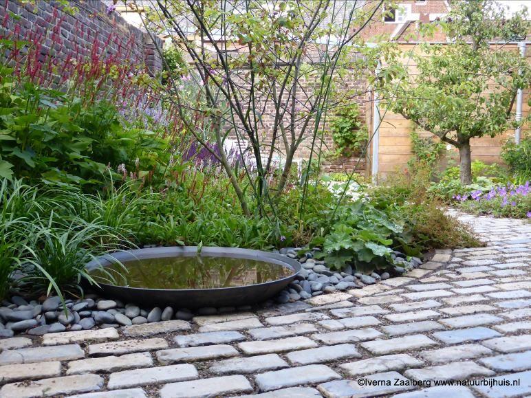 Vijver ontwerpen ontwerp een mooie vijver die past bij je tuin