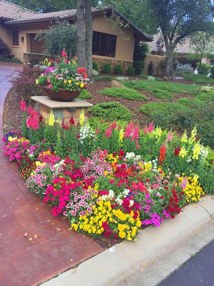 Elegant 15 fall flower bed ideas in 2020 fall flowers