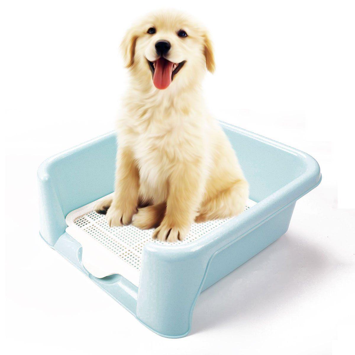 Amazon.com : Dog Toilet, FATPET Portable Plastic Toilet for Puppy ...