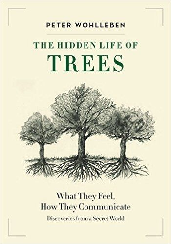 Download ebook the hidden life of trees by peter wohlleben pdf doc download ebook the hidden life of trees by peter wohlleben pdf doc epub buy pdf ebooks fandeluxe Images