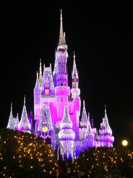 The Castle At Walt Disney World On New Years Eve 2008 Disney Vacations Disney World Walt Disney World