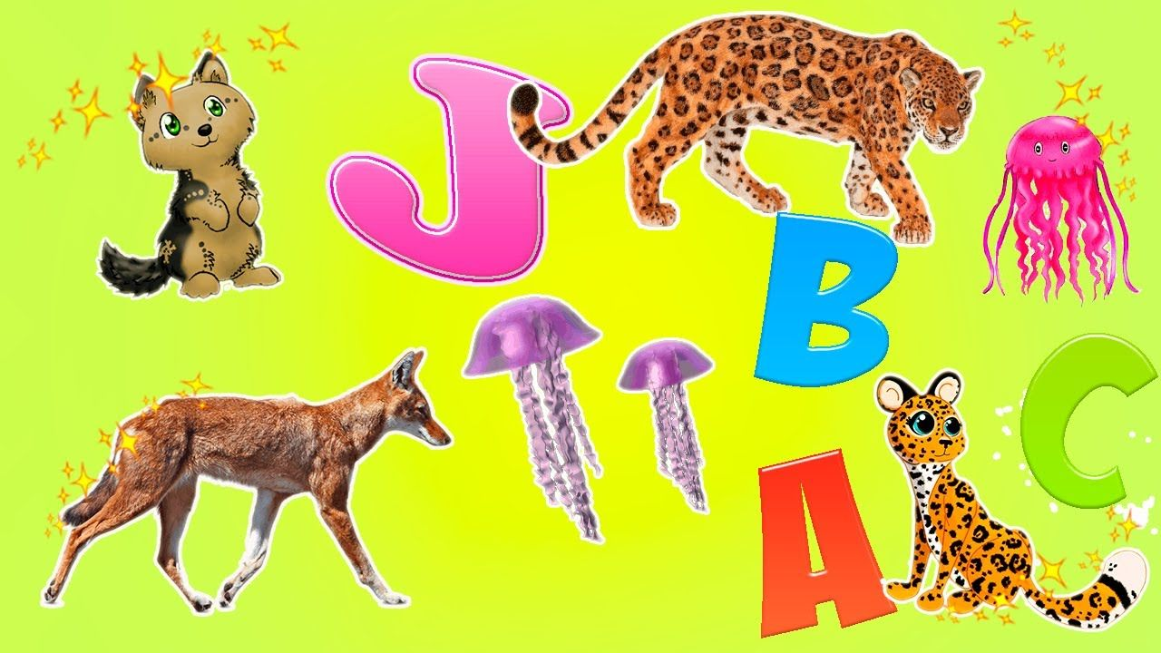 Learn Alphabet With Cartoon Real Animals For Children Wild Animals N Animals For Kids Animals Wild Animals