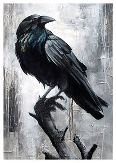 Top contender for my raven with key tattoo. I'd like a star in his eye, too.