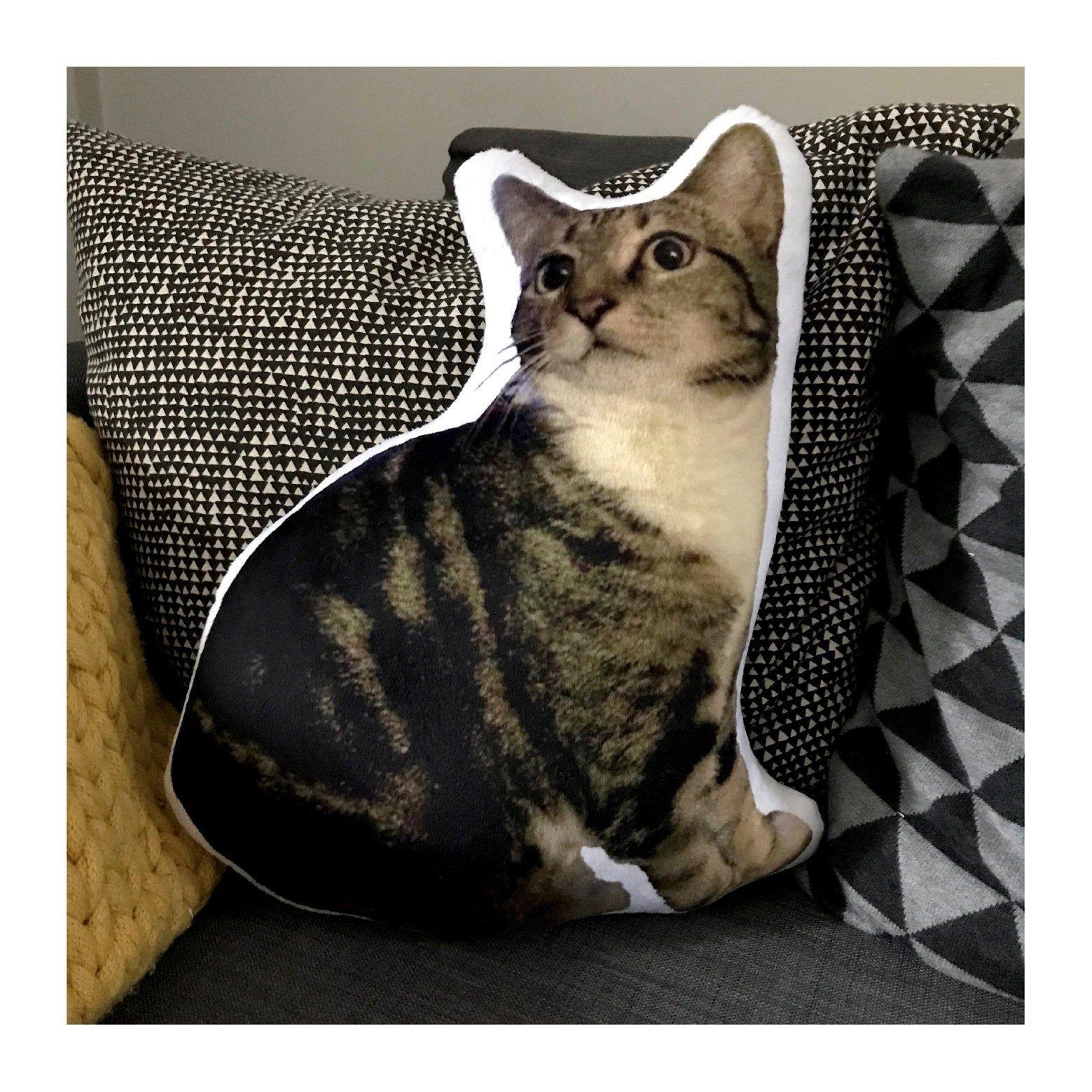 Fur fabric pet cushion Custom cat portrait pillow Photo
