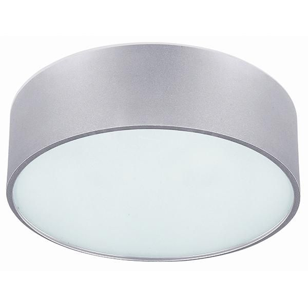 Dexter 2 lt flush mount frosted glass diffuser type a 13 w x 6