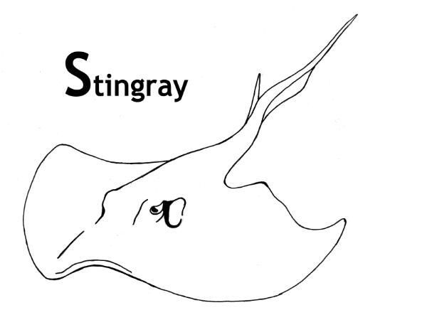 Stingray Coloring Pages With Images Cute Easy Drawings