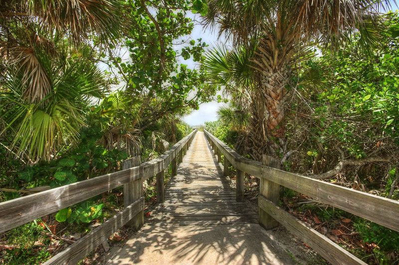 Lori Wilson Park Cocoa Beach Florida If An Affordable