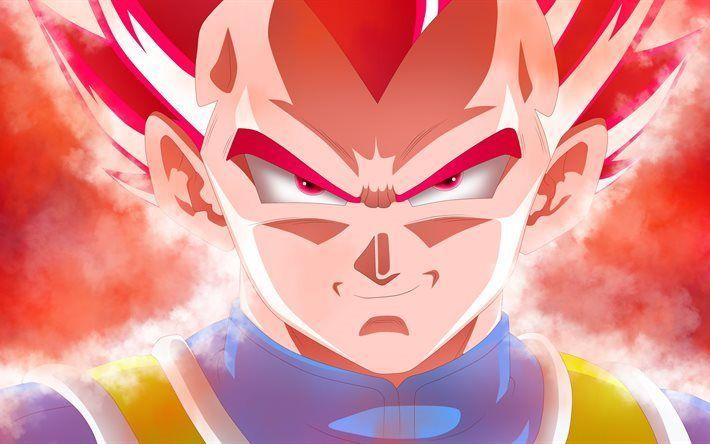 Télécharger Fonds D écran Dragon Ball Vegeta Portrait