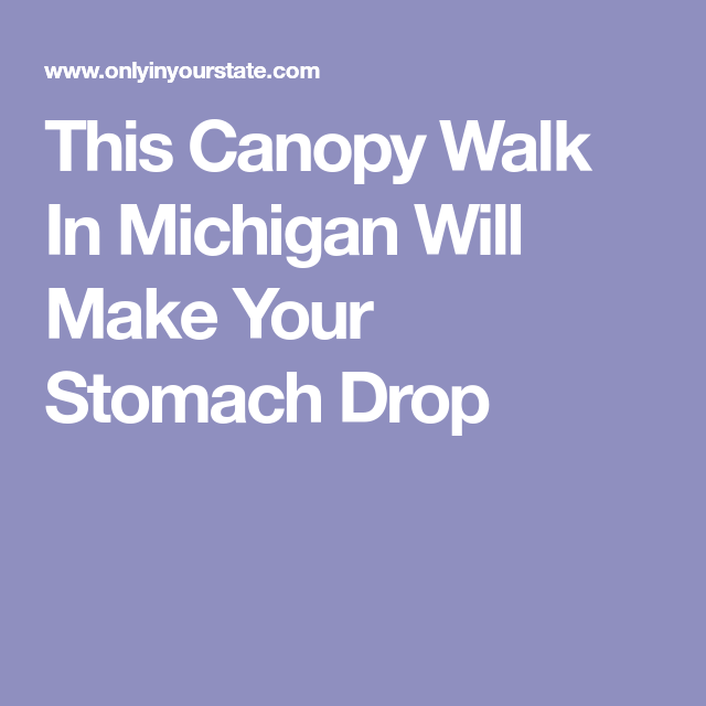 This Canopy Walk In Michigan Will Make Your Stomach Drop  sc 1 st  Pinterest & This Canopy Walk In Michigan Will Make Your Stomach Drop | Canopy