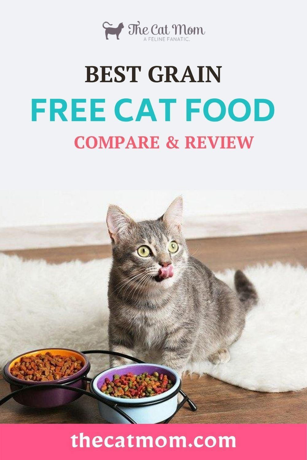 5 Best Cat Foods For Older Cats Reviews Features In 2020 Free Cat Food Cat Food Grain Free Cat Food