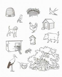 free animal habitat worksheet for kids (2) Animal