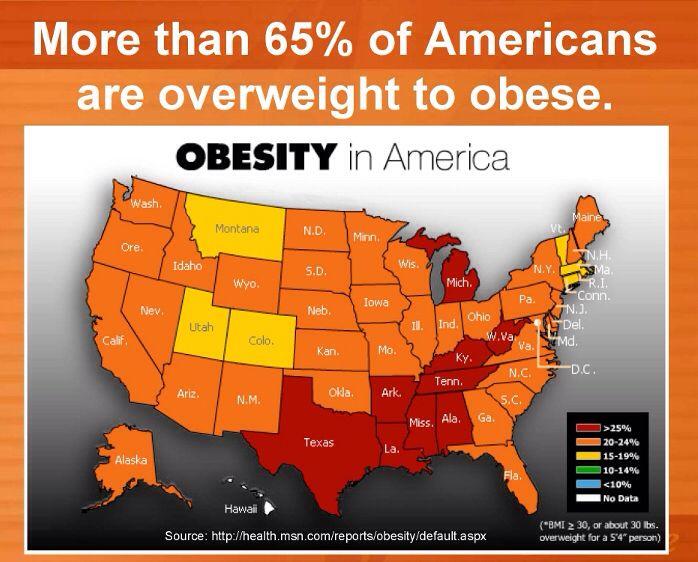 Satire essay on obesity