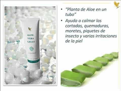 Top 10 Productos Forever Living Aloe Vera Gelly Forever Living Products Aloe
