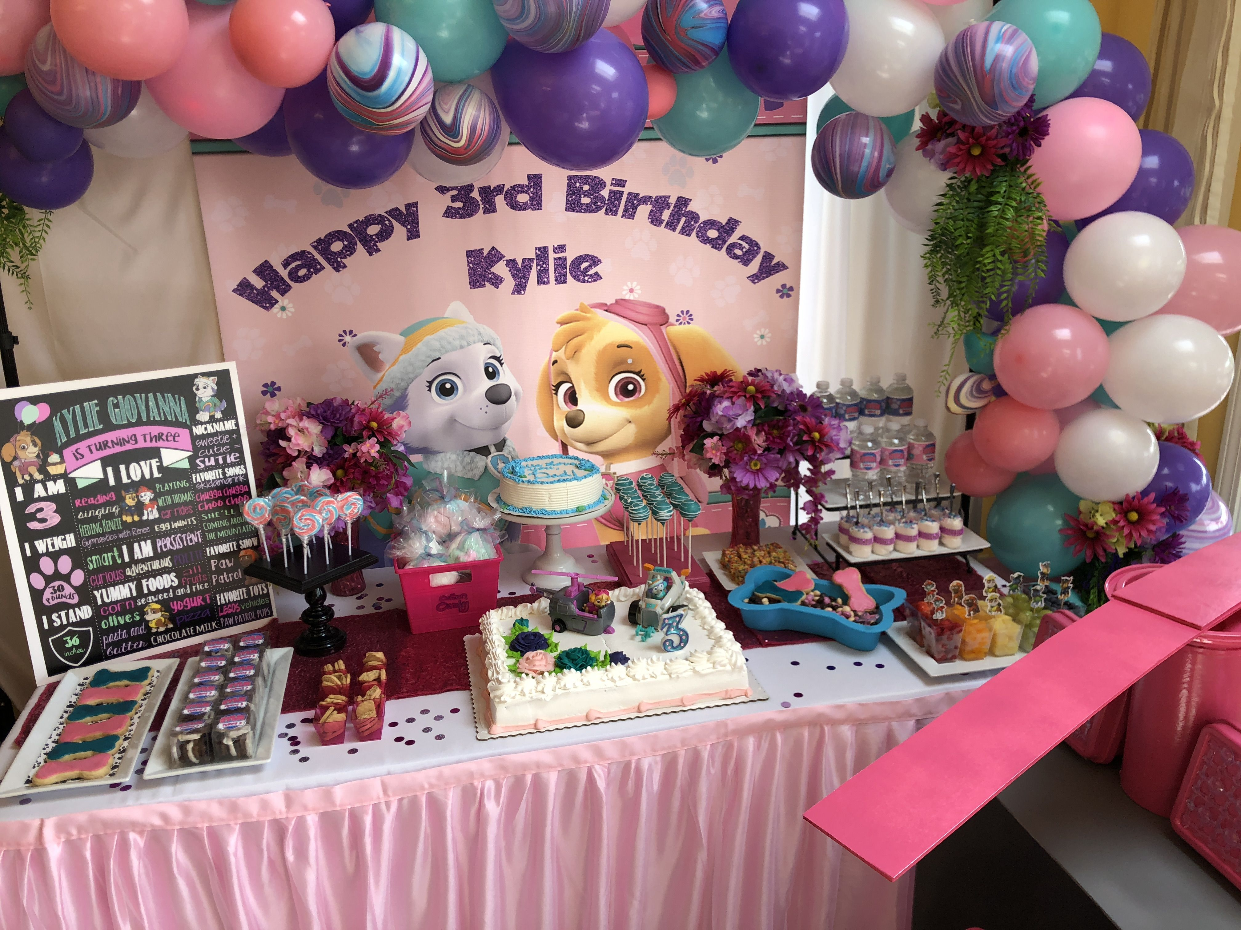 b2985a5028 Skye and Everest Girls Party with Pink, Purple and Teal colors ...