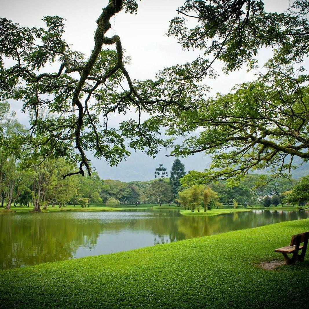 Pin on Lake Garden, Taiping, Perak, Malaysia.
