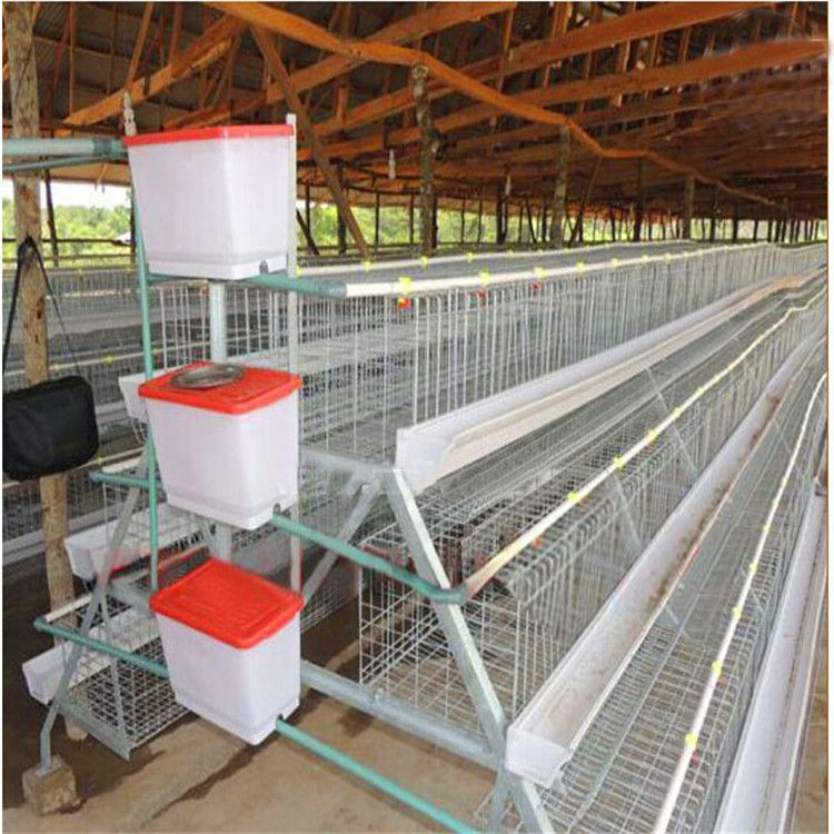 Image result for layer battery cage