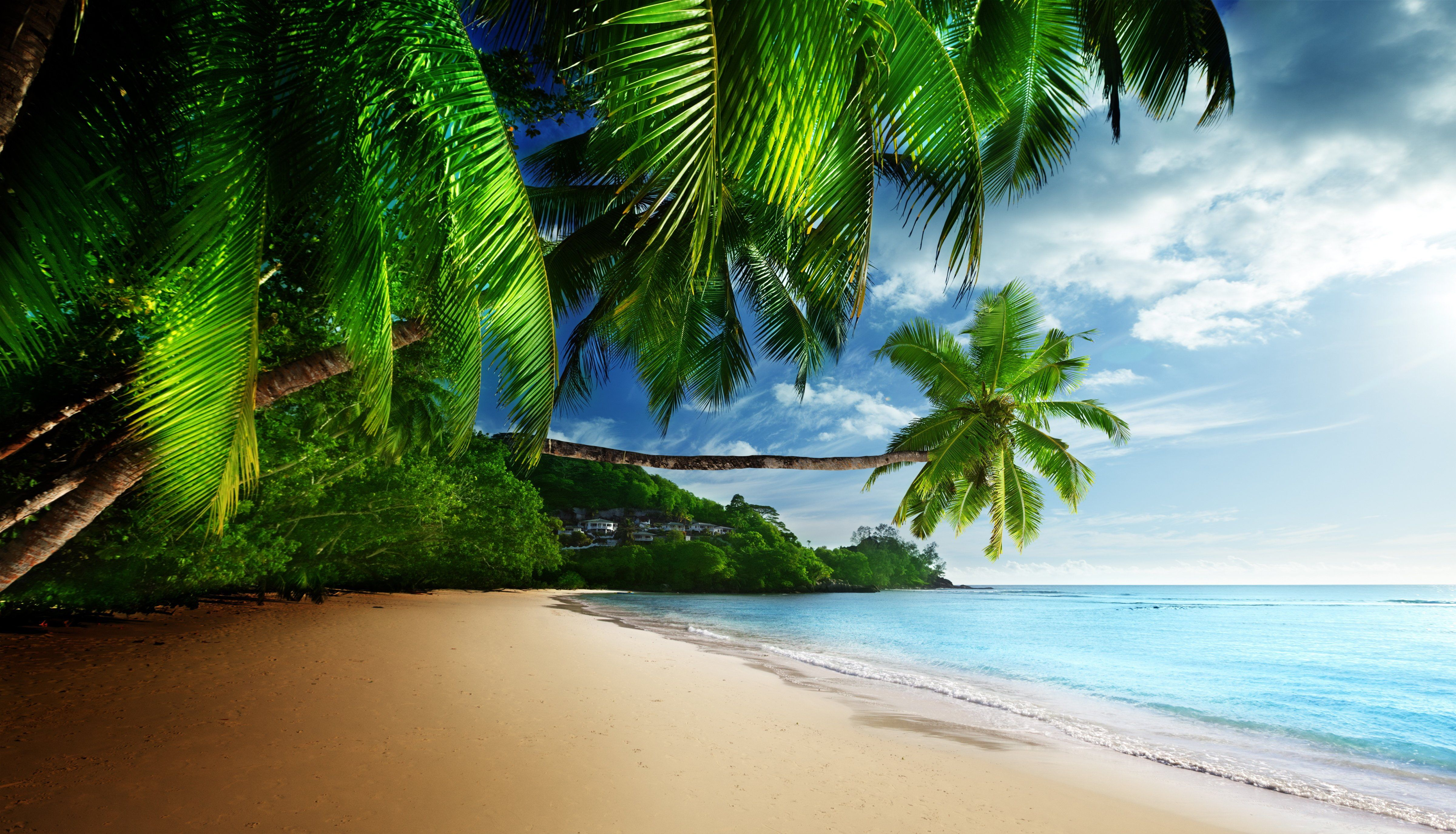 Beach Blue Coast Emerald Paradise Sea Sky Sunshine Tropical 4k Wallpaper Hdwallpaper Beach Wallpaper Beach Pictures Wallpaper Tropical Background Desktop wallpaper beach paradise
