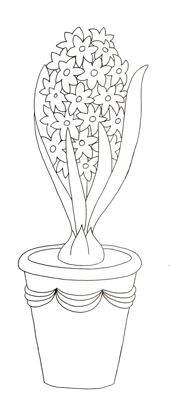 jácint | Spring coloring pages | Pinterest | Colorear, Molde y Cuadro