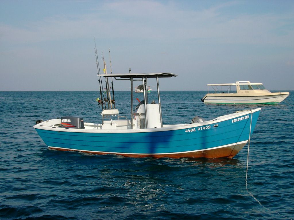 20 Foot High Sided Sea Skiff Wood Boat Plans Boat Design Wood Boats