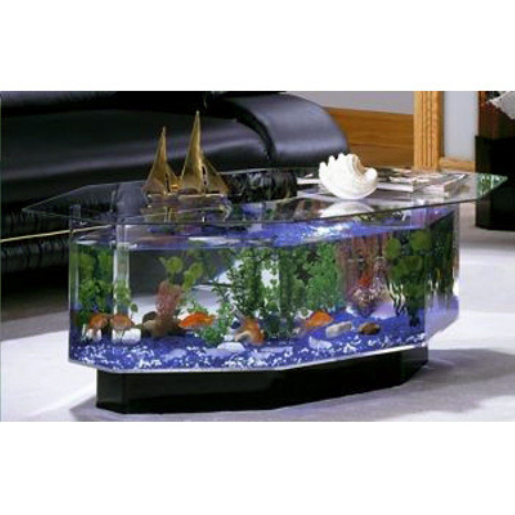 Table Basse Terrarium A Vendre aqua coffee table 28 gallon aquarium - 680   table basse