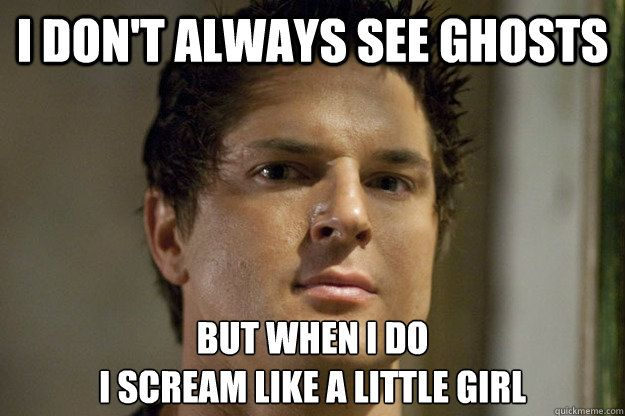 Funny Memes About Making Love : I dont always see ghosts but when i do i scream like a little girl