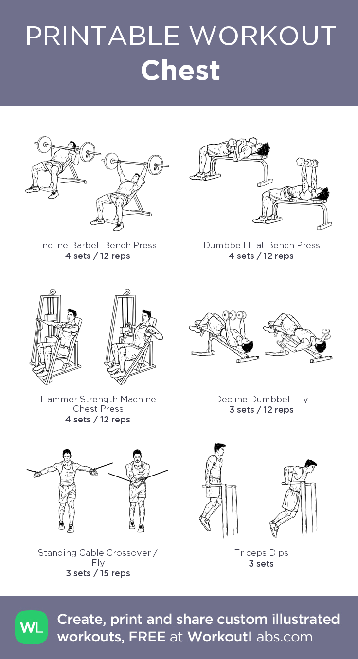 Chest my visual workout created at