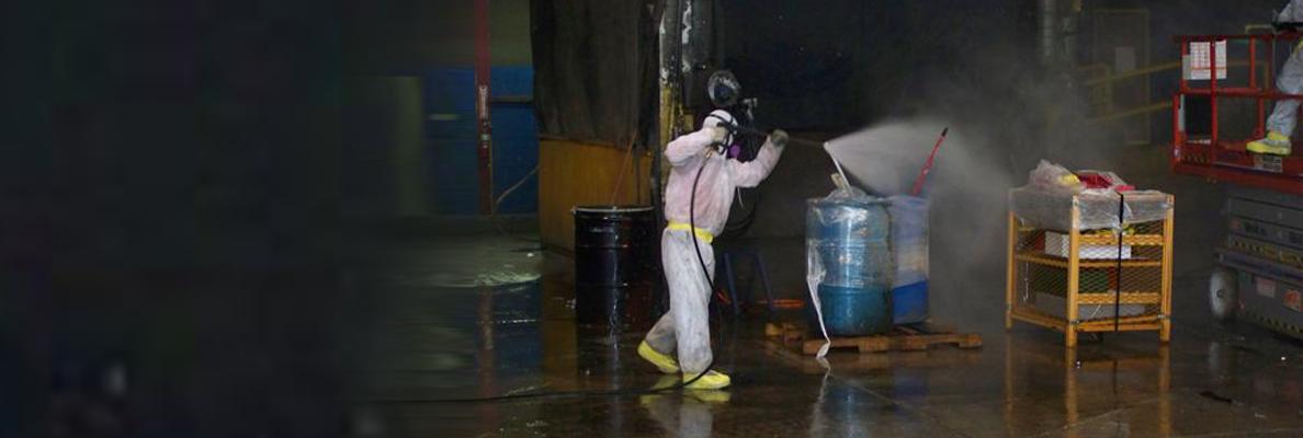 Pin On Asbestos Lead Mold Chicago Illinois