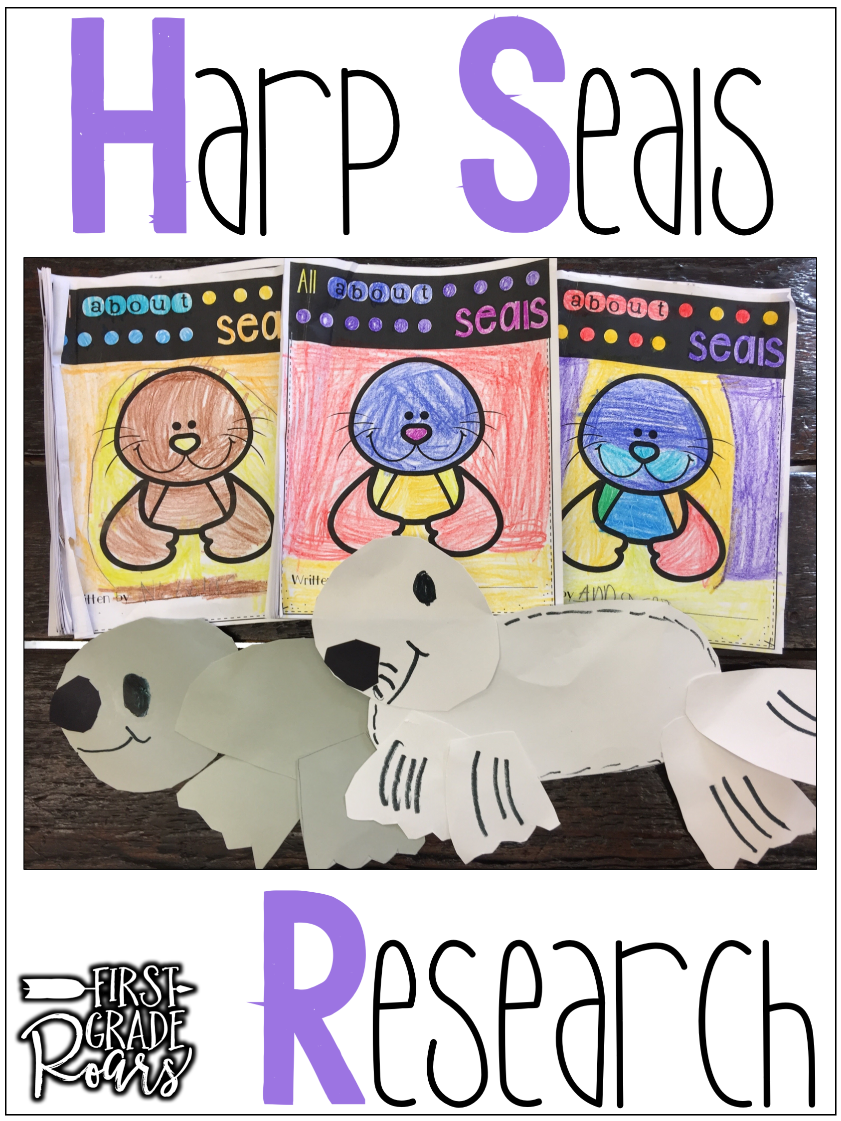 Arctic Harp Seal Informational Text Reading Writing