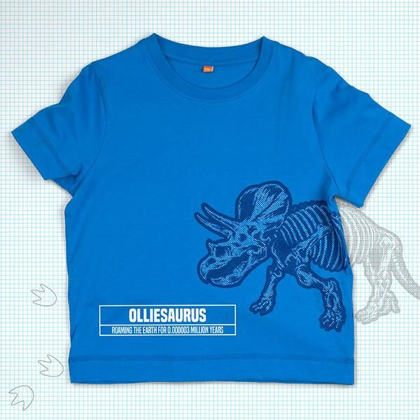 Personalised Kids Dinosaur T Shirt Printed with ANY NAME