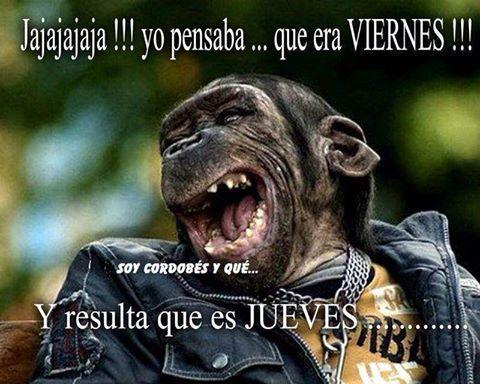 Imagenes Graciosas Para Whatsapp Memes Chistes Chistesmalos Imagenesgraciosas Humor Funny Baby Memes Funny Spanish Memes Humor