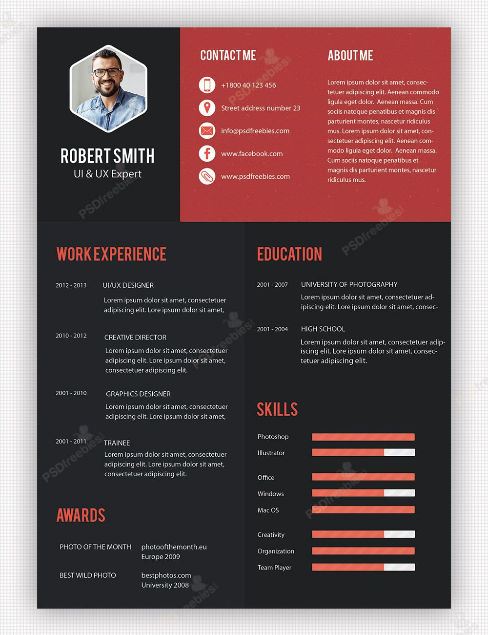 Great Creative Professional Resume Template Free PSD