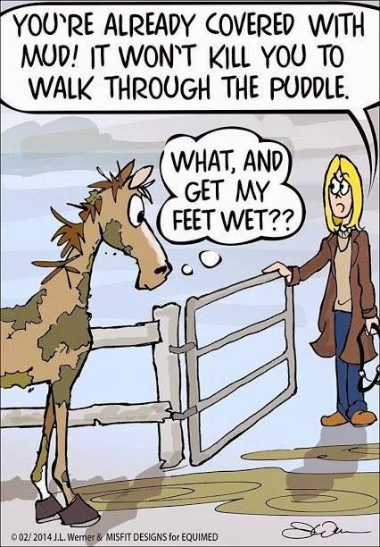 Gettin' your feet wet