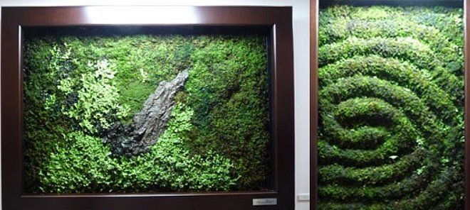 17 Best 1000 images about Moss wall on Pinterest Moss wall art Green