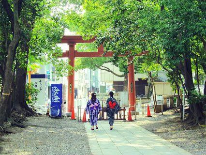 """Meditation in Tokyo. Waling Around """" Tomioka-Hachimangu """" in Tokyo, Japan. #Japan #Tokyo"""
