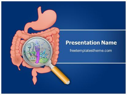 Download #free #Gastrointestinal #Organ #Anatomy #PowerPoint - powerpoint presentation