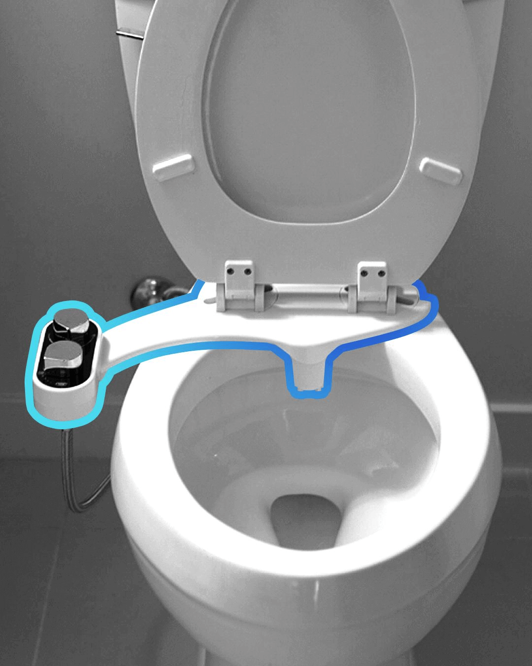 Clear Rear In 2020 Buy Toilet Toilet Accessories Nautical Bathroom Decor