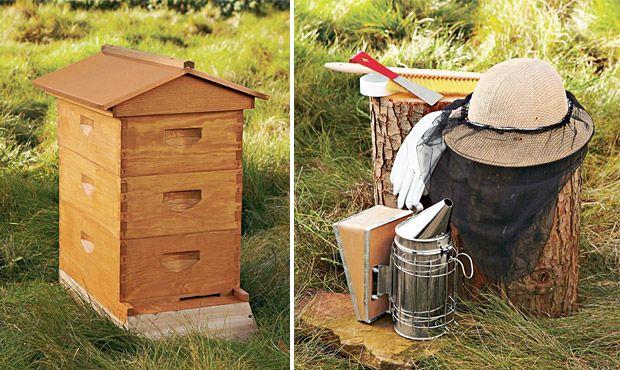 Backyard Beehive - Backyard Beehive Bee Keeping & Information Backyard, Bee Keeping