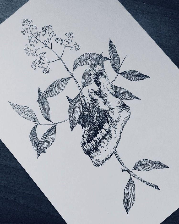 Dark Academia Botanical Dark Academia Aesthetic Sketchbook Journaling Sketch Book Art Journal