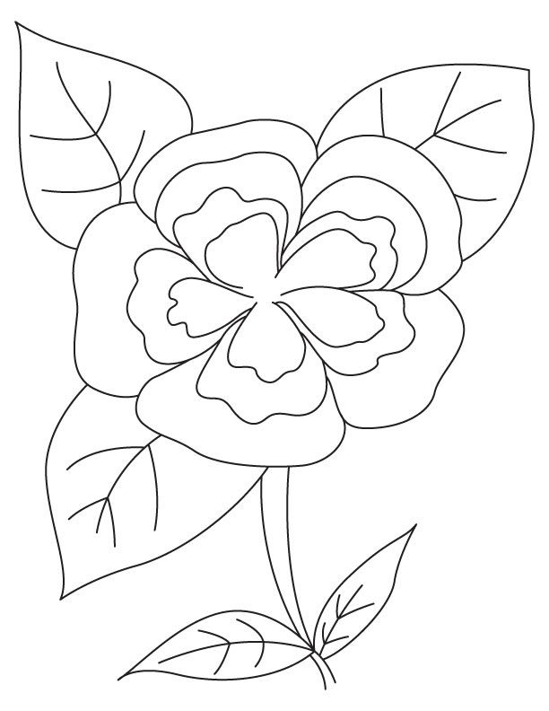 White Camellia Coloring Page