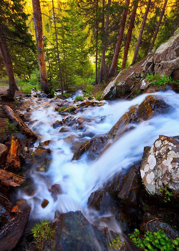 7 Most Beautiful Hidden Waterfalls In New Mexico |Waterfalls Near Taos New Mexico