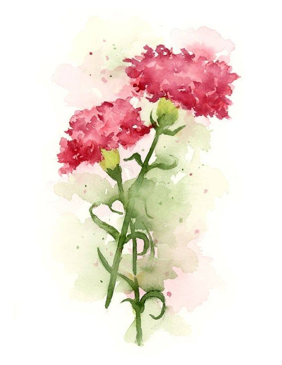 Carnation Flower Pink Carnations Art Print Flower Wall Etsy In 2020 Floral Watercolor Paintings Floral Watercolor Pink Flower Painting
