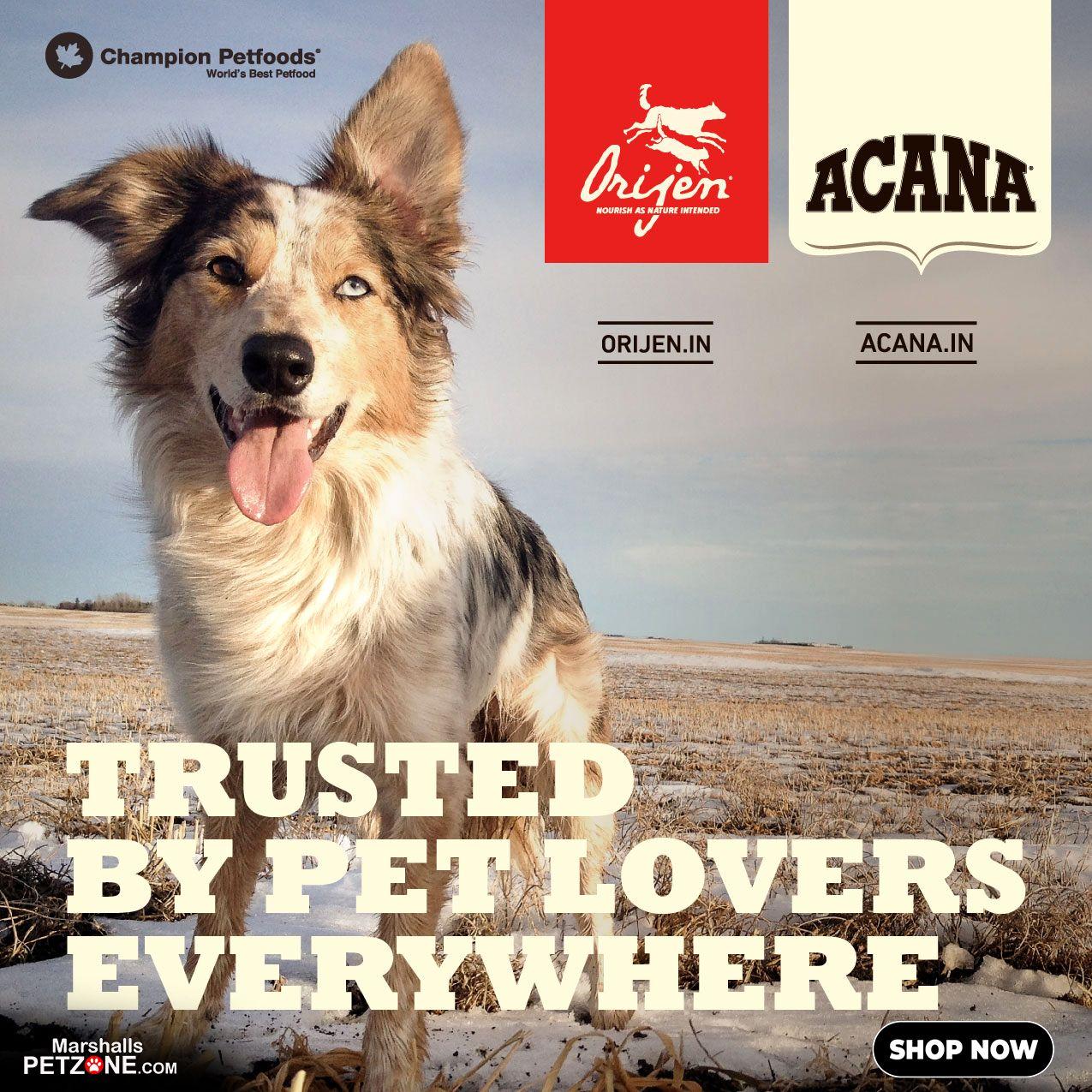 Orijen Dog Food Available Here Orijen S Recipes Contain