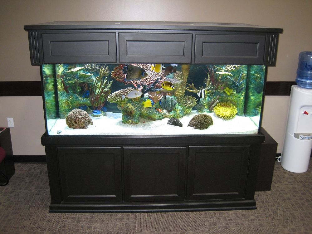 Aquarium Tank Design photo design aquarium Pinterest Tank