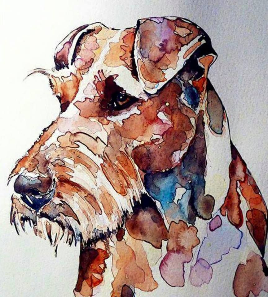 Lakeland Terrier Art Print Sepia Watercolor Painting by Artist DJR