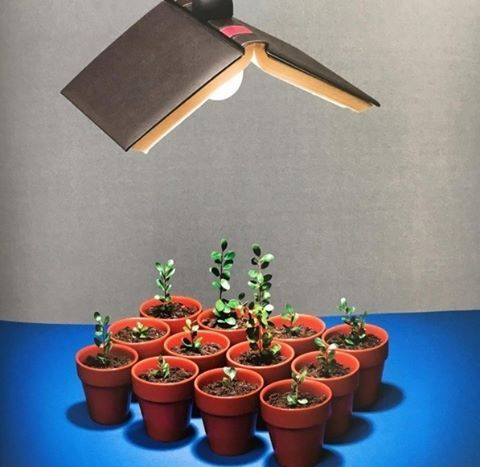 Criatividade e reaproveitamento andando juntos no décor!Via @interioresdesigndecoracao #camilakleinarquiteta #iluminação #light #book #vasos #verde