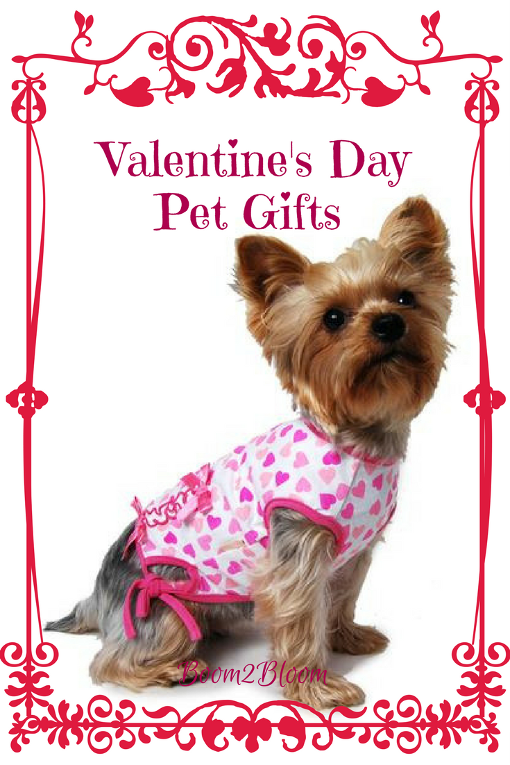 Pet Accessories For Valentine S Day Animal Love Pinterest Pets